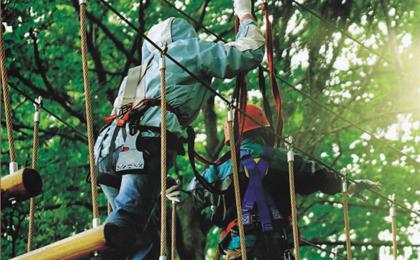 木质攀爬架43-66-01
