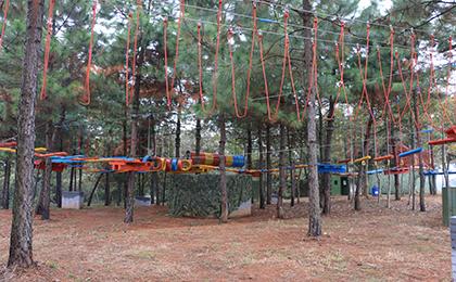 木质攀爬架IMG_3046