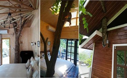 木制滑梯43-66-09